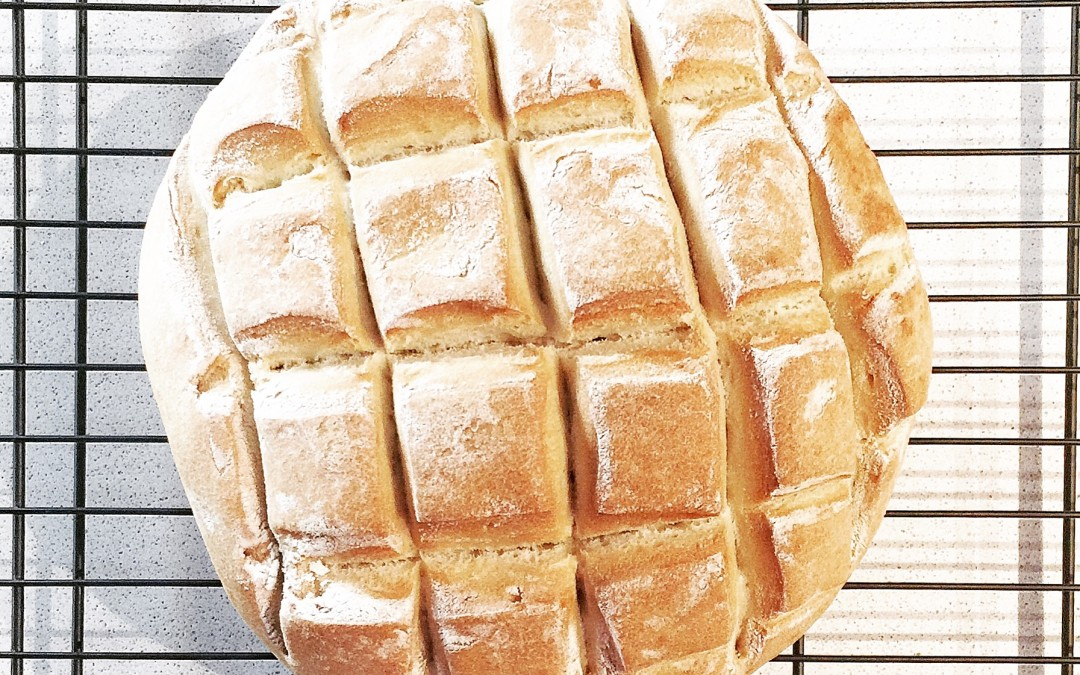 Pan rápido en Thermomix en bolsa de asar
